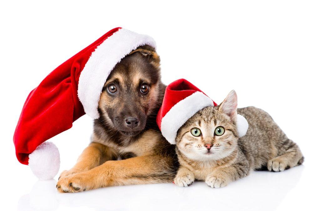 ¡Feliz navidad y prospero 2018!