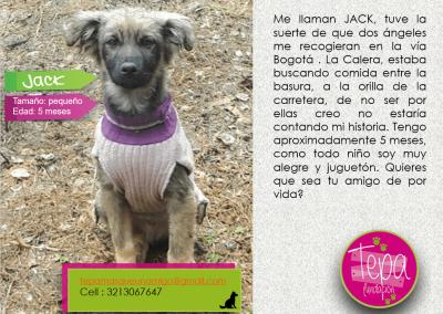 jack-min